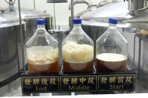 発酵プロセス